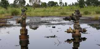 Stakeholders say PIB silent on environmental issues