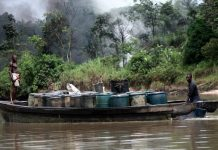 host communities of the Niger delta