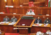 senate passes older persons bill